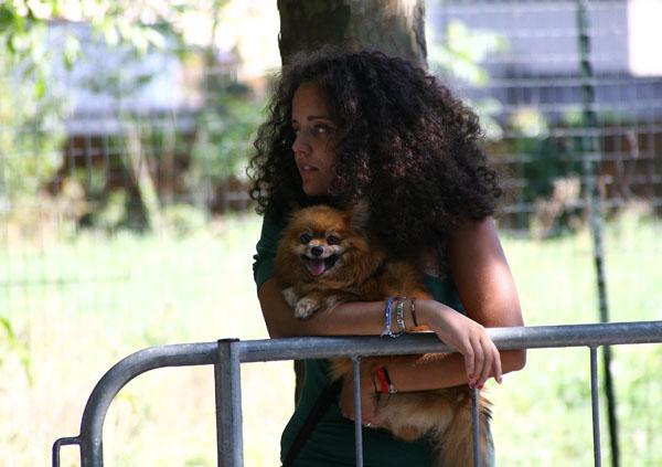 Una spettatrice.... con un cane.... (Foto Berry)