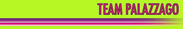 18.01.2015 - Banner Team Palazzago