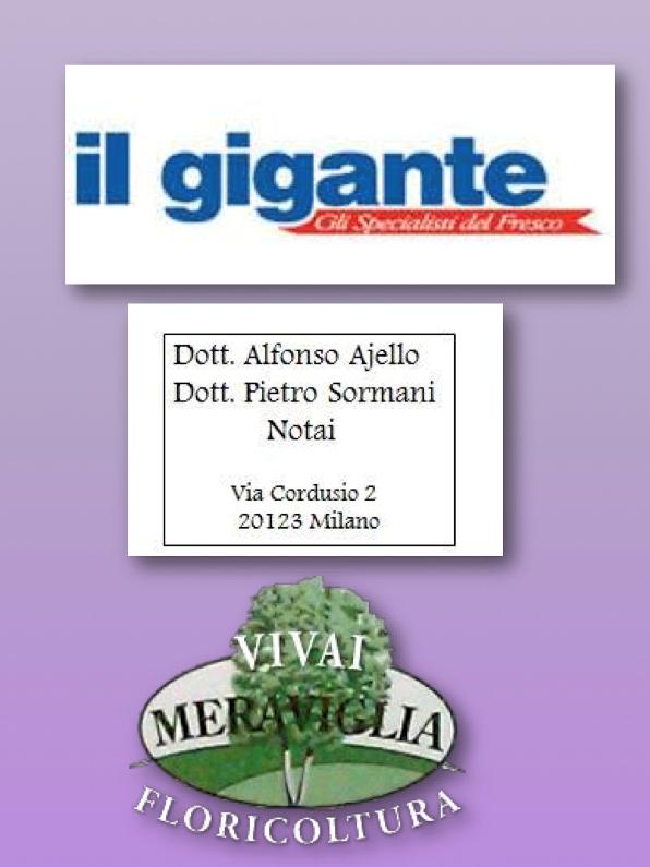 11.02.16 - I NS. SPONSOR - IL GIGANTE