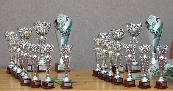 I Premi di Valmorea (Foto Kia)