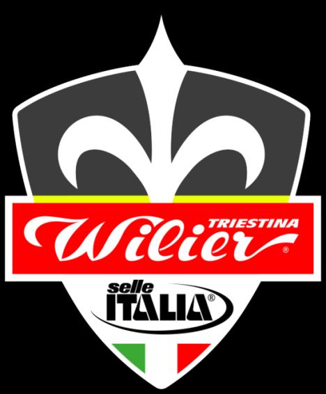 07.01.2017 - LOGO - wilier-selle-italia