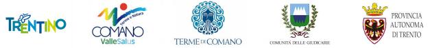 17.03.2017 - Logo Comano