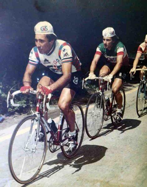 Antonio Saronni - Stagione 1981