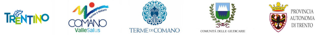 17.03.2017 - Logo Trentino