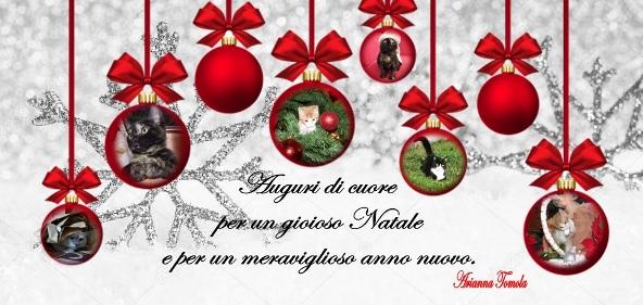 20.12.2017 - Tomola Arianna - Buone feste Arianna